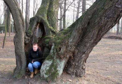 Pomniki przyrody Pszczelnika